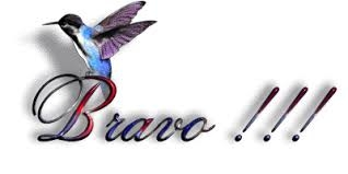 bravo colibri.jpg